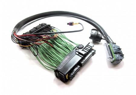 Boomslang AEM EMS-4 PnP Harness