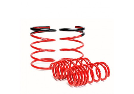 Skunk2 Lowering Springs